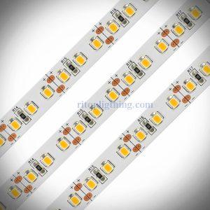 120leds 2835 24V 10 meters long flexible led strips ritop lighting